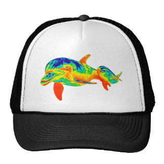 THE DOLPHIN EXPLORERS MESH HAT