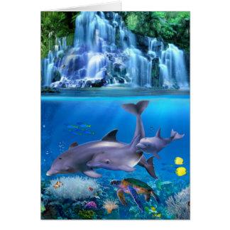 The Dolphin Family Card