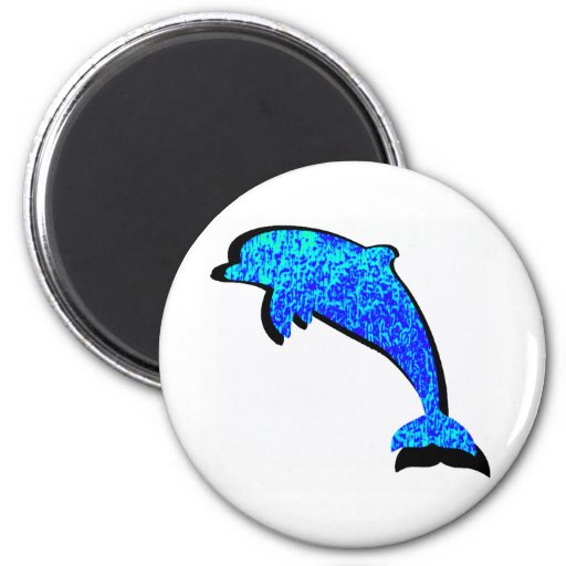 THE DOLPHIN SKY MAGNETS