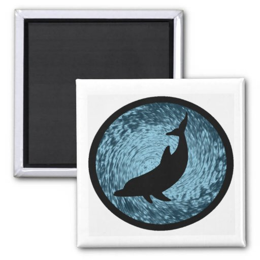 THE DOLPHIN WONDER MAGNETS