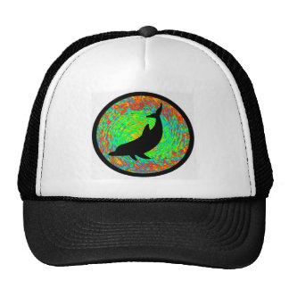 THE DOLPHINS LINE HATS