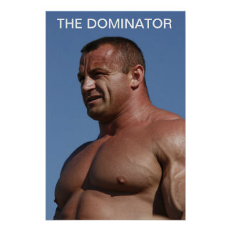 The Dominator Poster