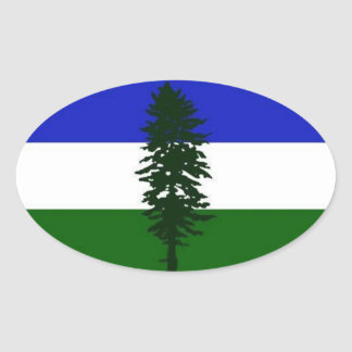 The Doug auto country sticker