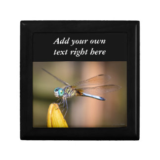 The Dragonfly Keepsake Box