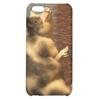 The Dream of a Pig Case For iPhone 5C