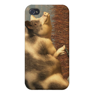 The Dream of a Pig iPhone 4 Covers
