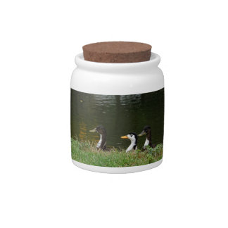 The Duck Squad Candy Jar