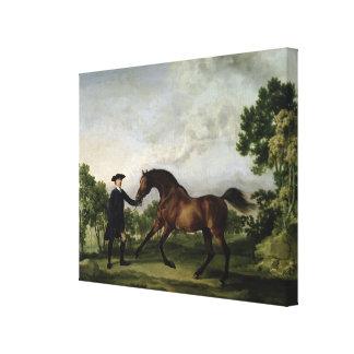 "The Duke of Ancaster's bay stallion ""Blank"" Canvas Print"
