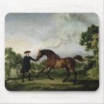"The Duke of Ancaster's bay stallion ""Blank"" Mouse Pad"