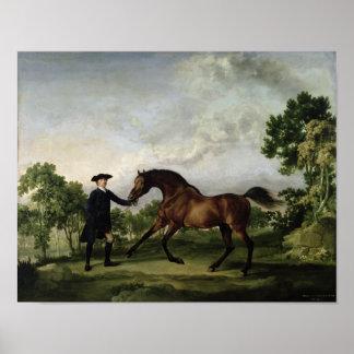 """The Duke of Ancaster's bay stallion """"Blank"""" Poster"""