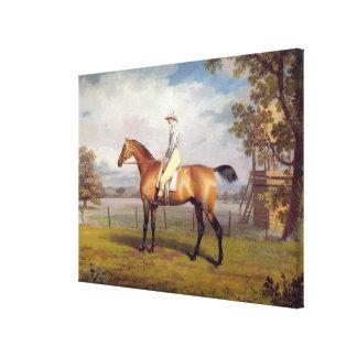 The Duke of Hamilton's Disguise with Jockey Up (oi Canvas Print