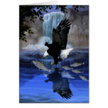 The eagle and the waterfall greeting cards