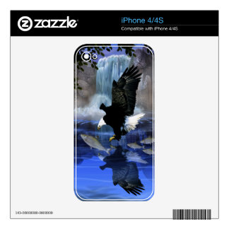 The eagle and the waterfall iPhone 4 decal