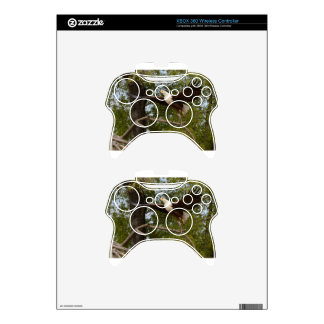 The Eagle Flies Tom Wurl Xbox 360 Controller Skin