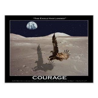 THE EAGLE HAS LANDED ~ Art Poster