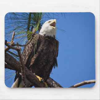 The Eagle Has Landed Mouse Pad