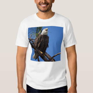 The Eagle Has Landed Shirts