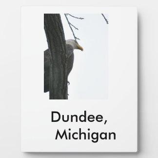 The Eagle Plaque