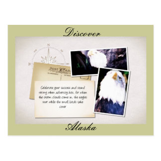 The Eagles Soar Postcard