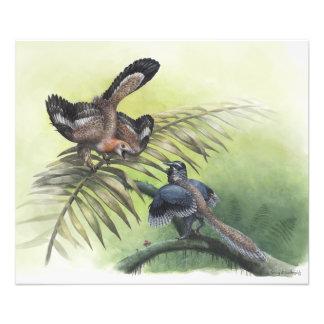 The Earliest Bird Photographic Print