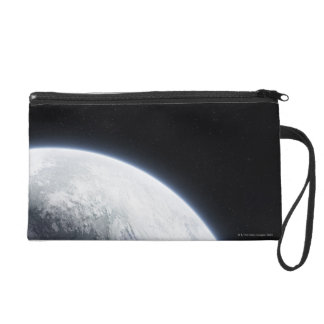 The Earth 4 Wristlet Purse