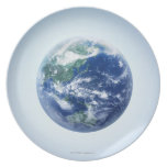 The Earth 9 Plates