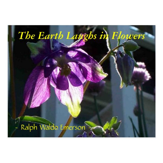 THE EARTH LAUGHS IN FLOWERS - COLUMBINE POSTCARD