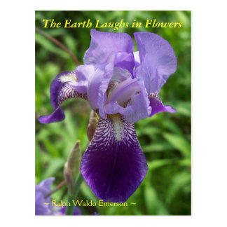 THE EARTH LAUGHS IN FLOWERS - IRIS POSTCARD