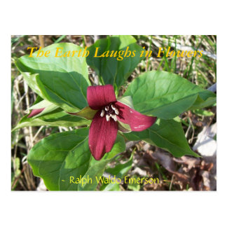 THE EARTH LAUGHS IN FLOWERS - RED TRILLUM POSTCARD