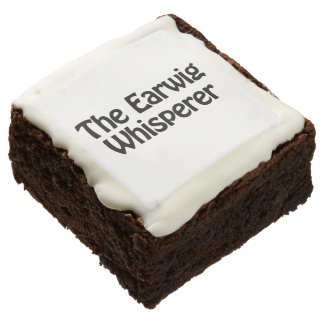 the earwig whisperer square brownie