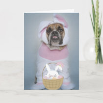 The Easter Bully Holiday Card