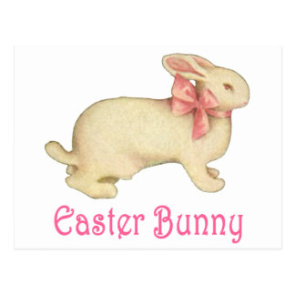 The Easter Bunny Postcard