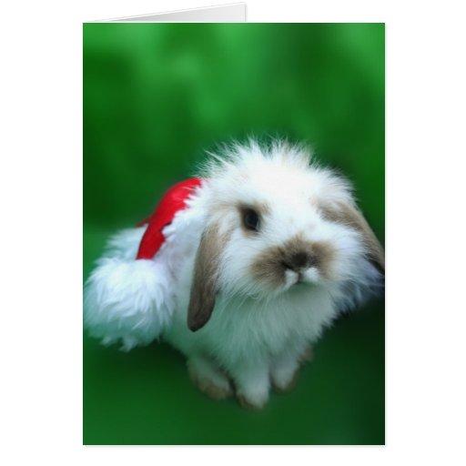 The Easter, Umm, Christmas Bunny Greeting Card