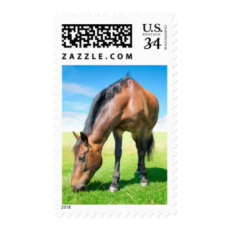 the eating horse postage
