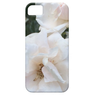 The Edgartown Rose - iphone5s Cover