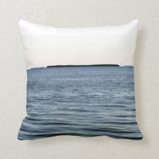 THE EDGE OF THE EVERGLADES THROW PILLOW