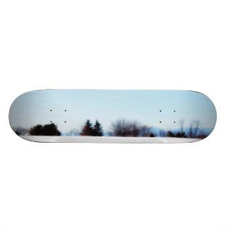 The Edges skateboard