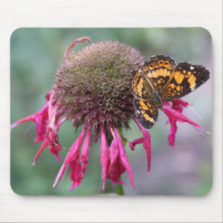 """""""The Edgy One"""" Butterfly Photography Mouse Pad"""