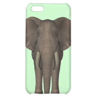 The Elephant  Case For iPhone 5C