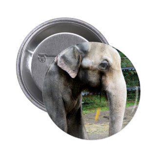 The Elephant Pinback Button