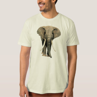 THE ELEPHANT SHIRT