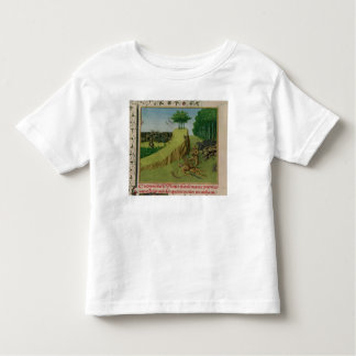 The Emperor Charlemagne Finds Roland's Toddler T-shirt