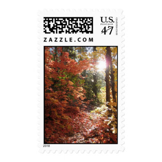 The Enchanted Forest (2ann+albers ) Postage Stamps