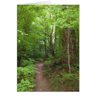The Enchanted Forest (3) Greeting Cards