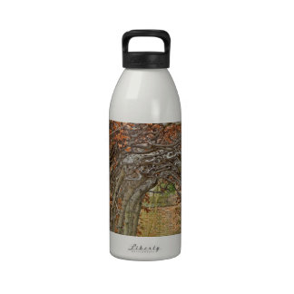 The Enchanted Path Reusable Water Bottles