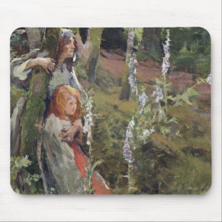 The Enchanted Wood (oil on canvas) Mouse Pad