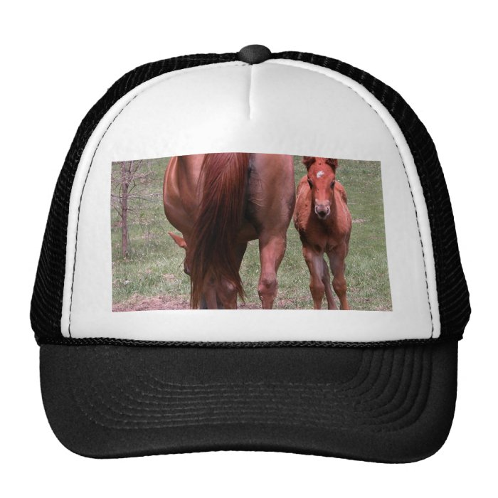 The end and the beginning trucker hat