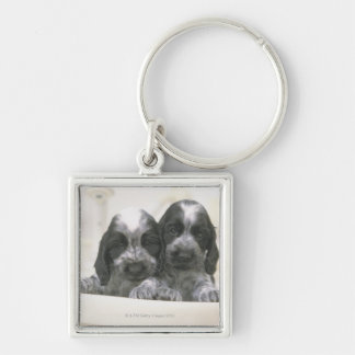 The English Cocker Spaniel is a breed of dog. It Keychain