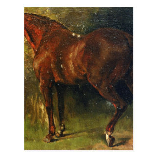 The English Horse of M. Duval by Gustave Courbet Postcard