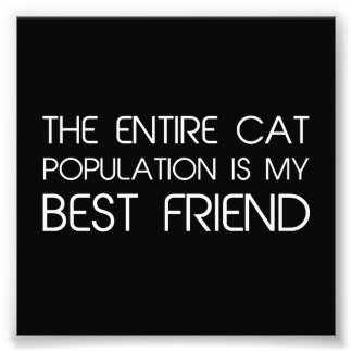 The Entire Cat Population Is My Best Friend Photo Print